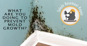mold prevention mold growth