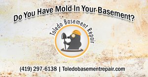 mold prevent basement