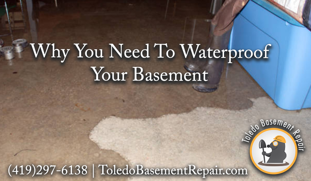 Why You Need To Waterproof Your Basement