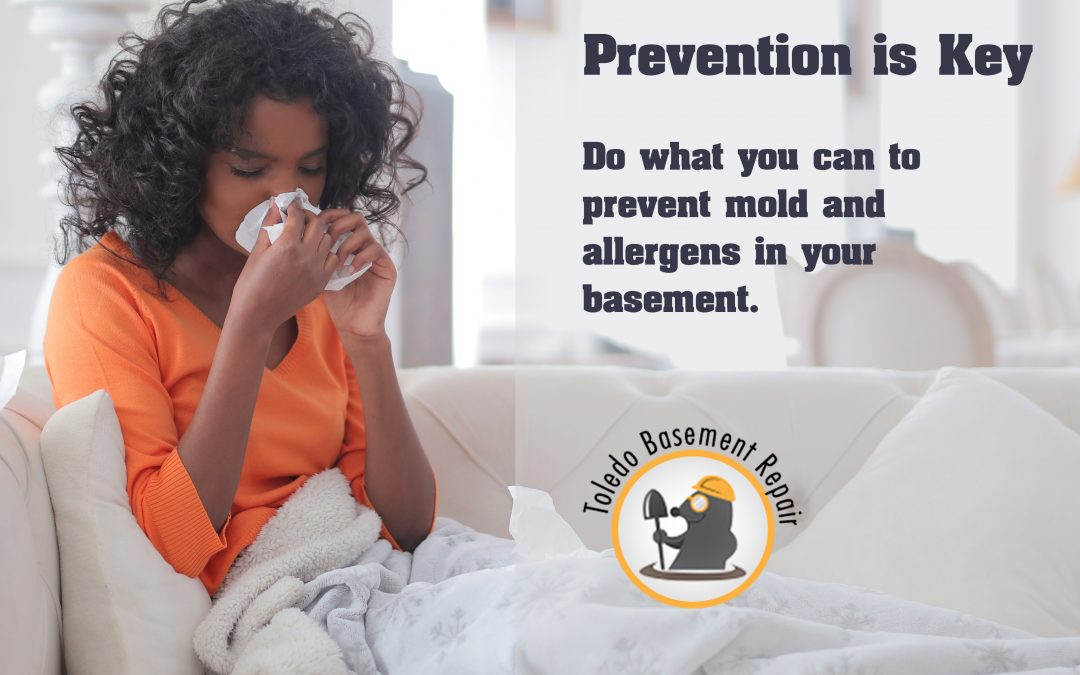 How to Prevent Mold and Allergens in the Basement