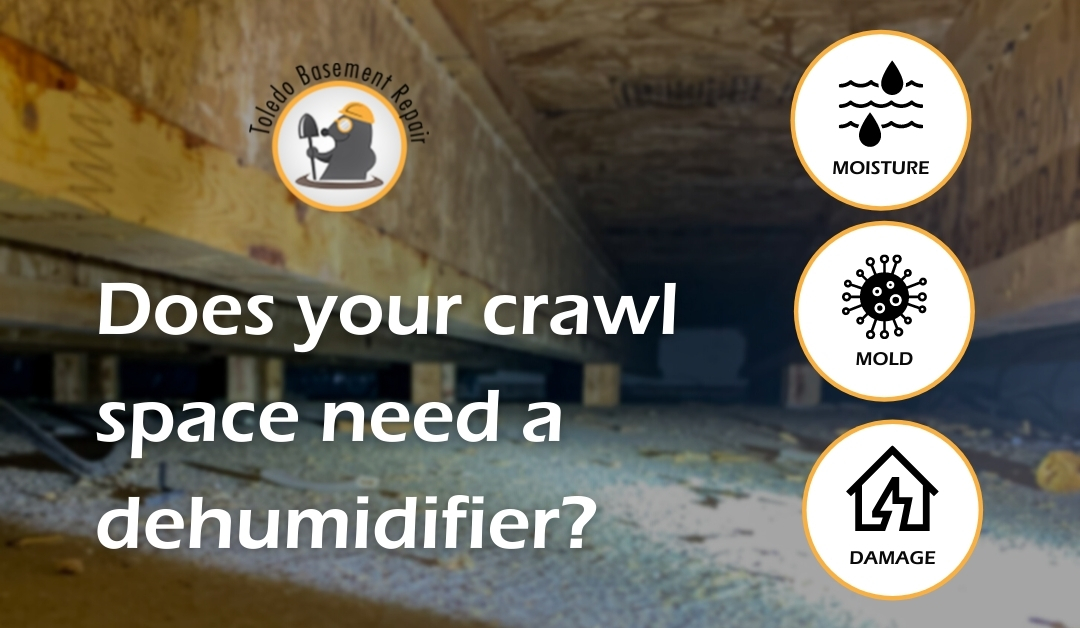 Can I put a dehumidifier in the crawlspace?